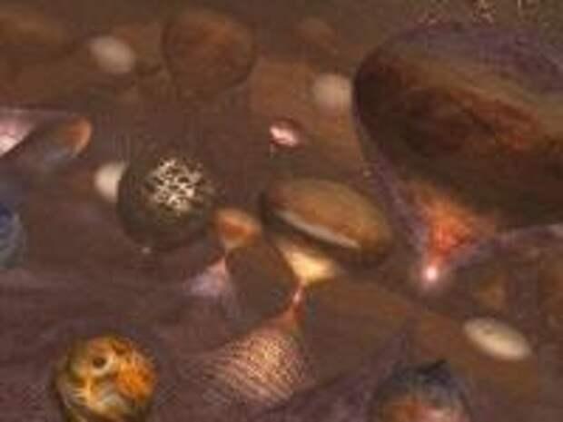 Что скрывается за пределами видимой Вселенной?