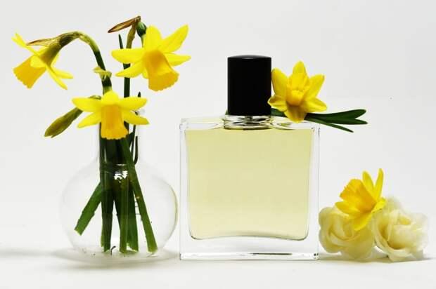 Narcissus-Perfume-1024x682