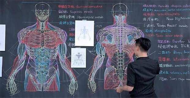 Тайваньский преподаватель потрясающе рисует на доске иллюстрации к лекциям