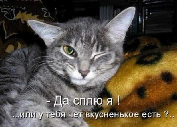 1477474315_memy-23