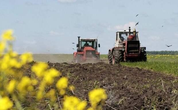 Хозяйства 18 районов Забайкалья ведут весенне-полевые работы