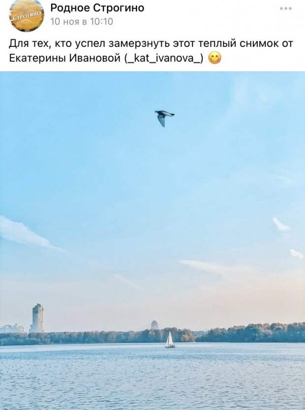 Фото дня: лазоревые дали Строгина