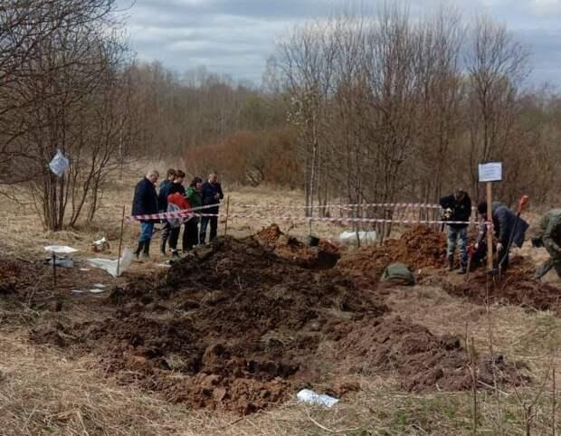 «Ржев. Калининский фронт»: подняты останки 31 бойца