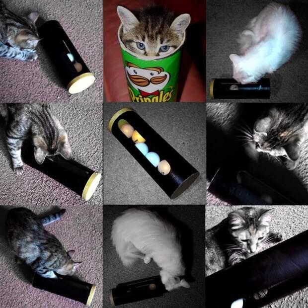 игрушка для котов своими руками