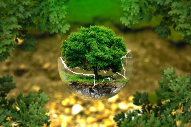 Узнать больше о природоохранном законодательстве смогут уссурийские предприятия 10 июня