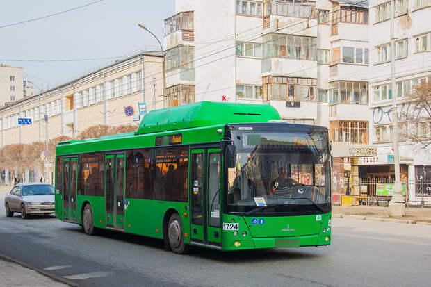 Водитель хотел заставить мальчика, которого стошнило, вымыть салон автобуса