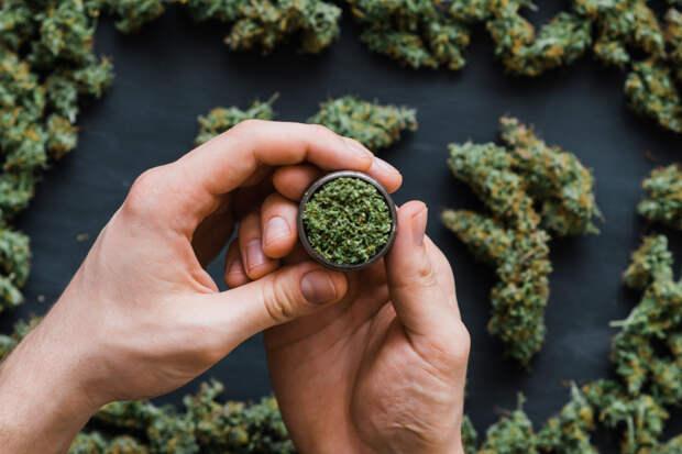Minnesota Denies Coverage of Medical Marijuana for Injured Workers