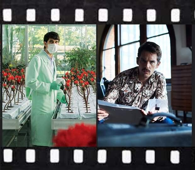 7 захватывающих научно-фантастических фильмов, которые можно посмотреть дома