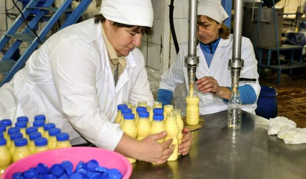 Карелии грозит дефицит молока