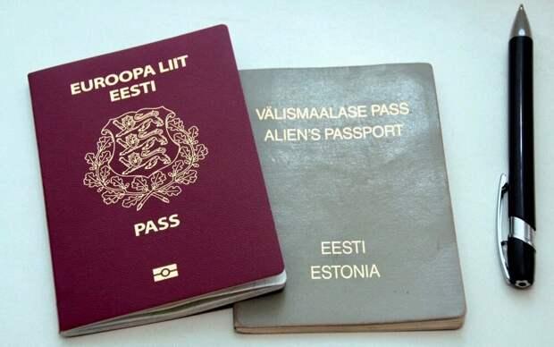 Не все эстонцы – русофобы: смелое слово Аллика