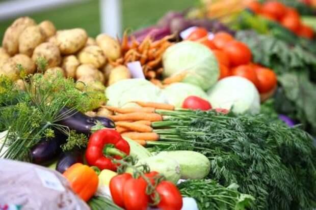 Кабмин РФ сможет продавать сельхозпродукцию из госфонда при сильном росте цен