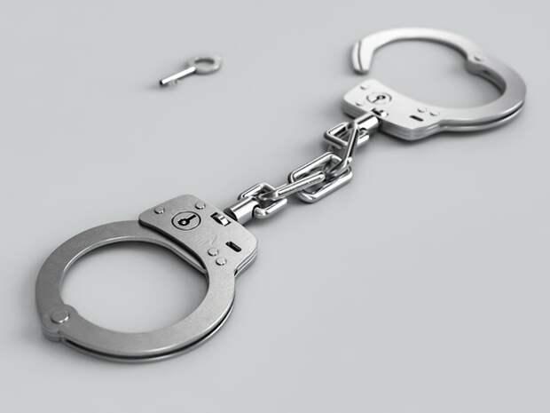 Главного редактора владимирского СМИ арестовали на 9 суток за участие в акции у ИК-2