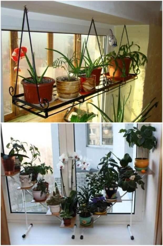 Полки, подставки и этажерки для цветов лучше приобретать компактных размеров. | Фото: vsecveti.life.