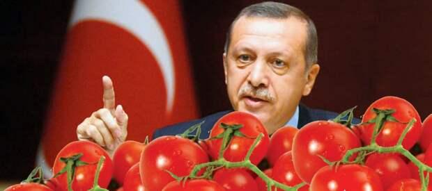 250 грузовиков с турецкими помидорами не могут въехать в Россию