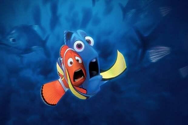 Ученые: Память рыб не 3 секунды!