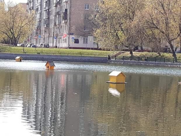 Обновленные домики для уток появились на Амбулаторном пруду Фото: Дмитрий Дунько