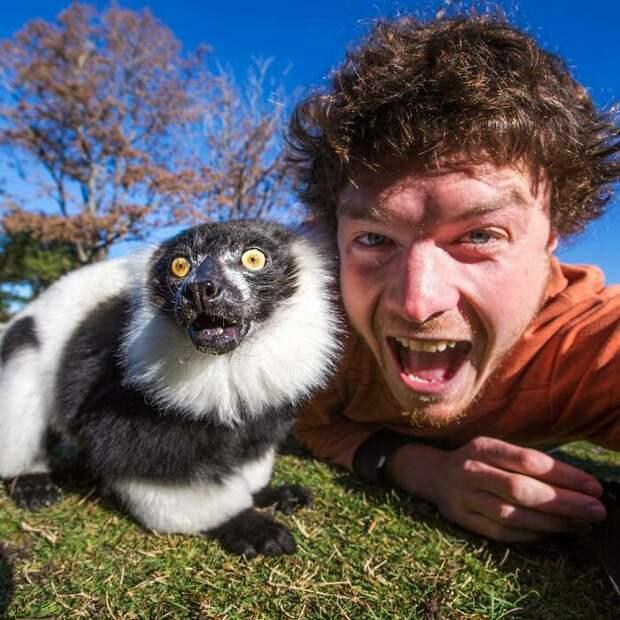 Аллан Диксон главный специалист планеты по веселым селфи с животными