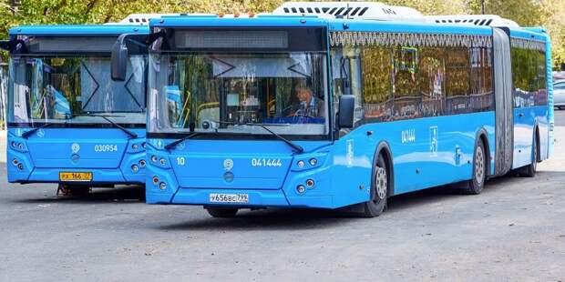 На маршрут 559 выйдут более вместительные автобусы