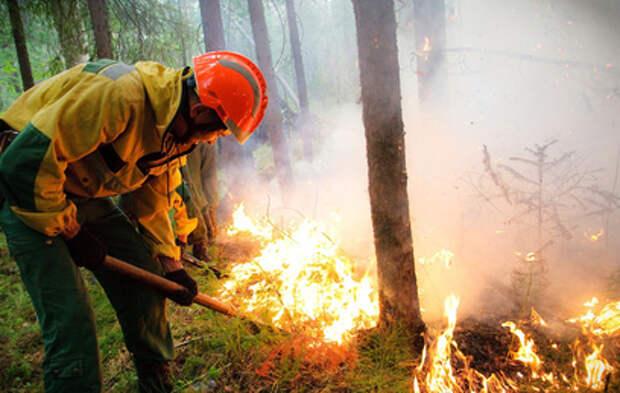 Дым от лесных пожаров в Якутии достиг Аляски