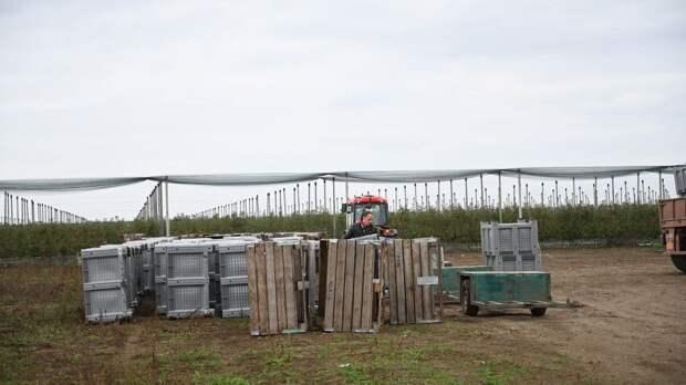 В строительство крымского фруктохранилища инвестор вложил более  миллиарда рублей