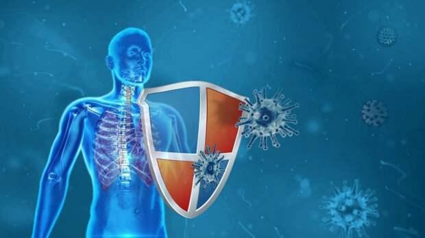 Калькулятор для оценки риска заражения коронавирусом разработали в Австралии