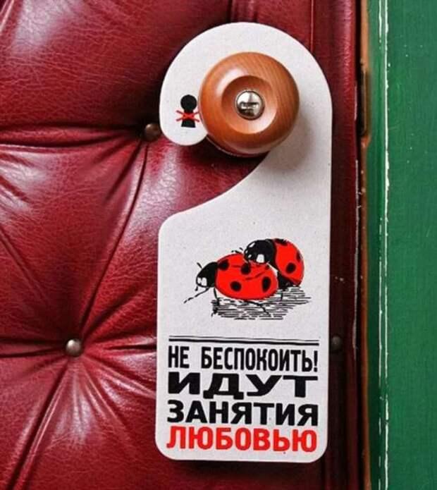 Прикольные вывески. Подборка chert-poberi-vv-chert-poberi-vv-10020330082020-12 картинка chert-poberi-vv-10020330082020-12