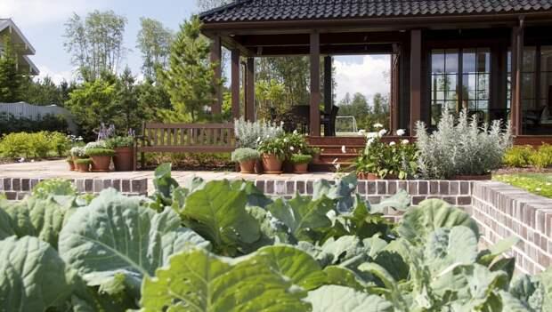 12 вариантов сада для вашего дома