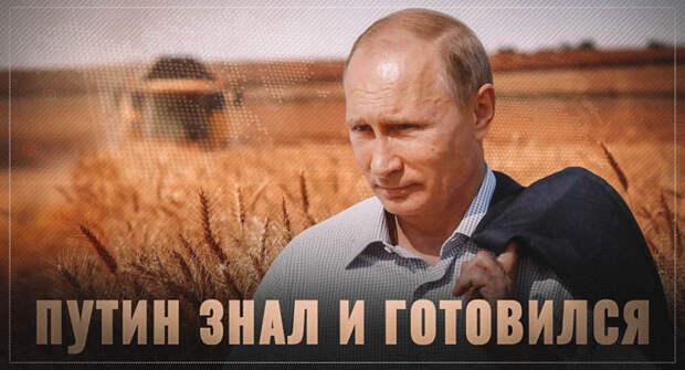 Путин готовился. Пандемия и её последствия