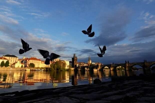 Чехия призвала Россию исключить ее из списка «недружественных стран»