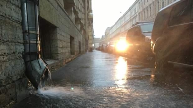 Шесть человек пострадали из-за непогоды в Москве