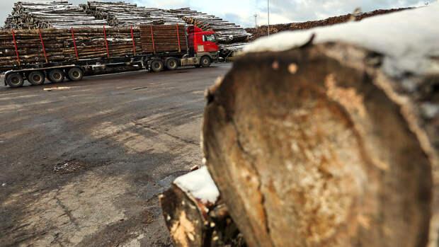 В России оказалась в дефиците древесина для строительства домов