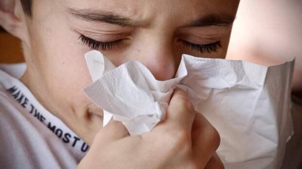Врач Малинкин заявил, что постоянное чихание может указывать на наличие COVID-19 даже после прививки