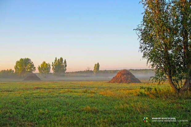 Волгоградцев приглашают к участию в международном фотоконкурсе по экологии