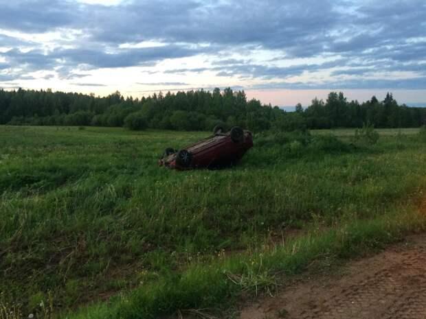 Иномарка опрокинулась в Удмуртии из-за выбежавшего на дорогу зайца