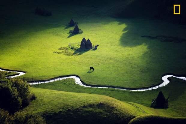 Рай на Земле: волшебное утро сразу после восхода солнца. Fundatura Ponorului, Трансильвания, Румыния national geographic, дикая природа, лучшие фотографии, фотографии природы, фотоконкурс, фотоконкурсы. природа