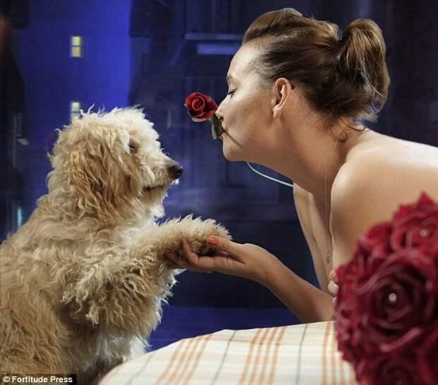 Чтобы воспитать в людях любовь к собакам, собаковладельцы разделись догола голый календарь, животные, народная реклама, собаки и хозяева