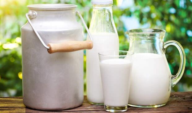 Козье молоко полезно для здоровья