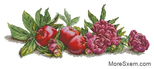 Пионы и яблоки