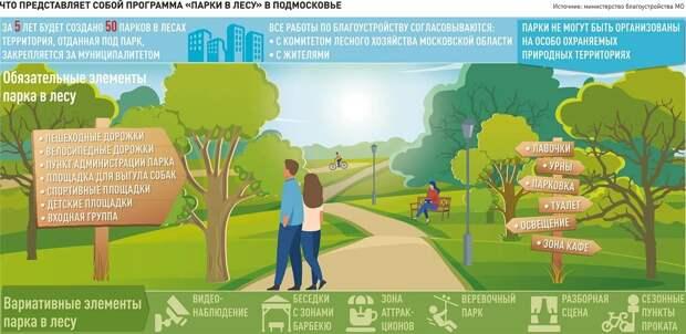 На лесных территориях Подмосковья создадут 50 полноценных парков
