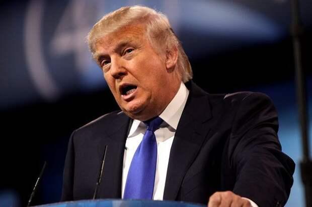 Трамп заявил, что больше не будет вводить в США жесткие санитарные меры