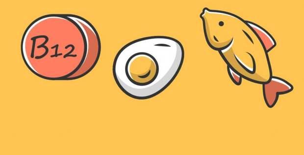 Питание, богатое витамином В12, почему оно важно?