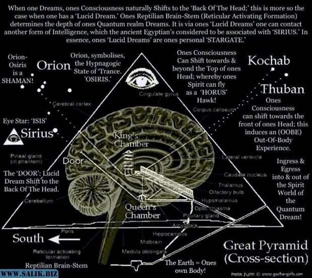 Секрет Всевидящего Ока. Квантовый мега - компьютер у тебя в мозгу