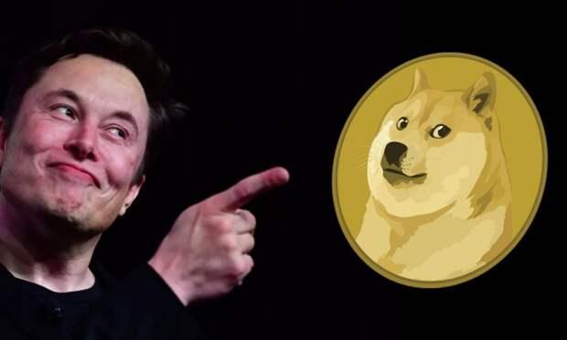 SpaceX будет принимать Dogecoin для финансирования полета на Луну