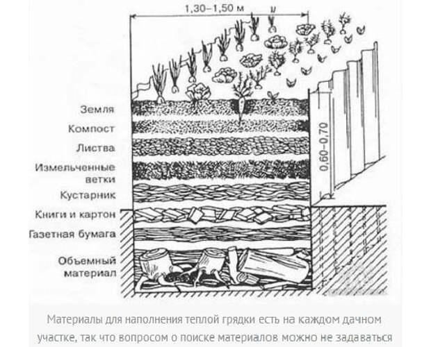 Устройство теплой грядки. Рисунок с сайта teplica-exp.ru