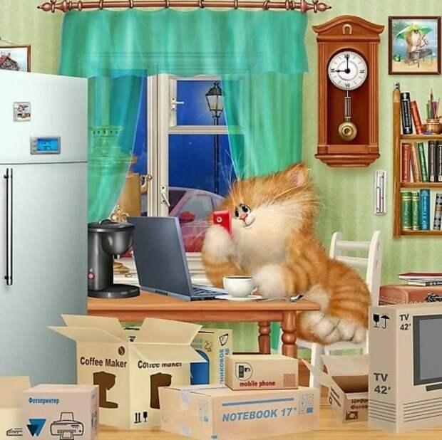 коты Алексея Долотова – 26