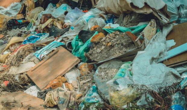 Отменить стройку мусорного полигона планируется вЕкатеринбурге