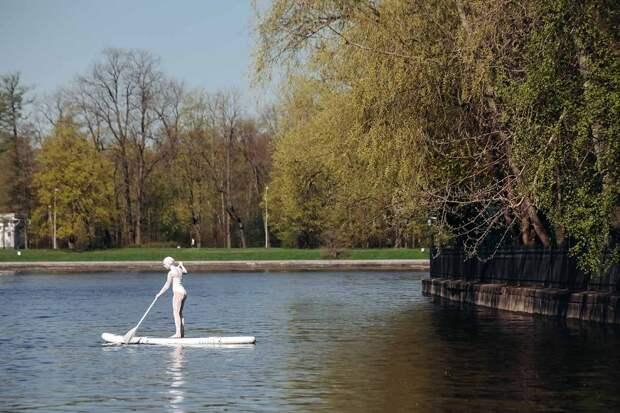 В Петербурге девушка с веслом вернулась на Крестовский остров