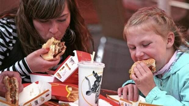 Гамбургеры McDonalds хотят проверить на наличие мяса | Статьи | Известия
