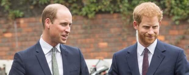 Принцы Гарри и Уильям отказались произносить вместе речь на открытии памятника матери