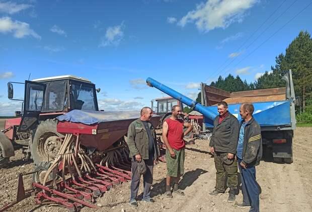 Хлеб севера – рожь: нижегородские аграрии делают упор назерновые культуры